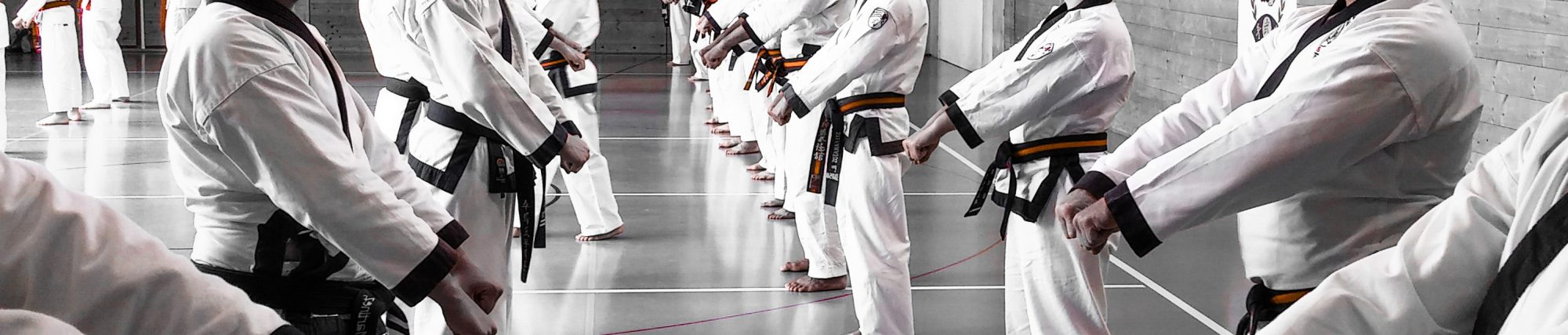 Blog wasatch martial arts fandeluxe Choice Image